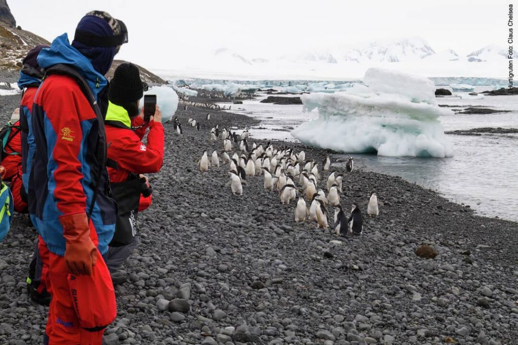 Hurtigruten Antarktis: Brown Bluff Vulkan